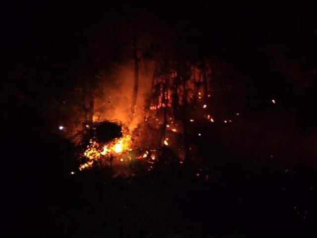 Huy động hơn 700 người trắng đêm khống chế cháy rừng ở Hà Tĩnh - Ảnh 2.