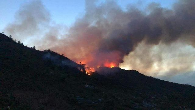Huy động hơn 700 người trắng đêm khống chế cháy rừng ở Hà Tĩnh - Ảnh 1.