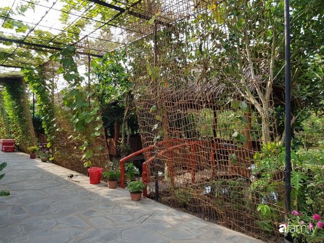Ngôi nhà làm từ 4000 trái dừa có chi phí xây dựng lên đến 6 tỷ ở Vĩnh Long và tâm nguyện của chủ nhà khiến ai cũng bất ngờ - Ảnh 6.