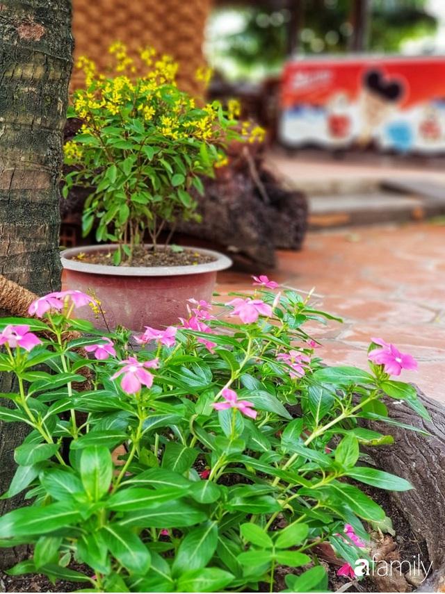 Ngôi nhà làm từ 4000 trái dừa có chi phí xây dựng lên đến 6 tỷ ở Vĩnh Long và tâm nguyện của chủ nhà khiến ai cũng bất ngờ - Ảnh 8.