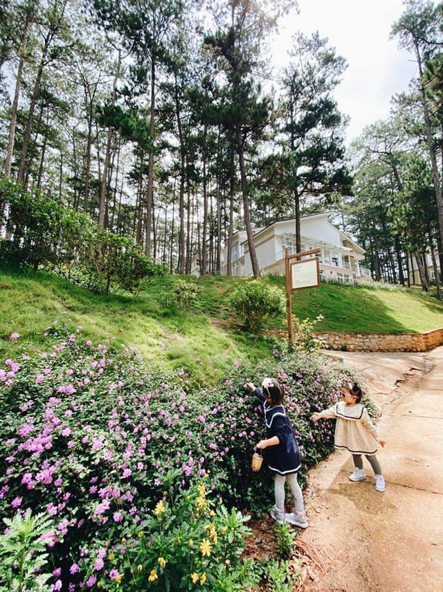 Rời Sài Gòn, vợ chồng trẻ lên Đà Lạt xây nhà đẹp mê li giữa vườn thông - Ảnh 13.