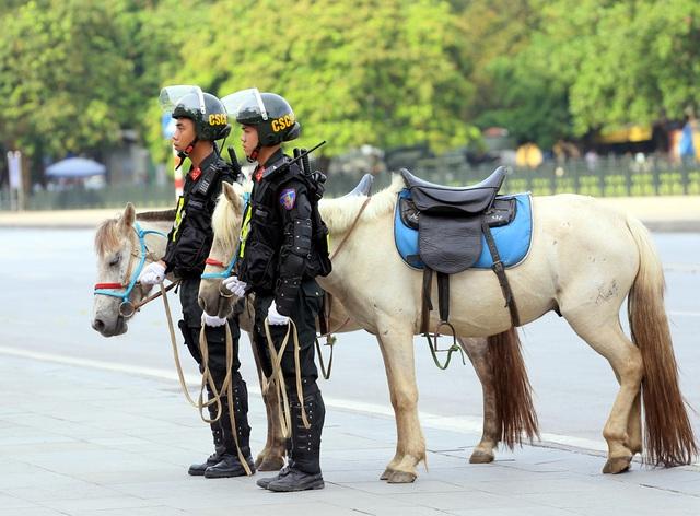 Có thể sử dụng thêm giống ngựa Bắc Hà để xây dựng Đoàn Cảnh sát cơ động kỵ binh - Ảnh 4.