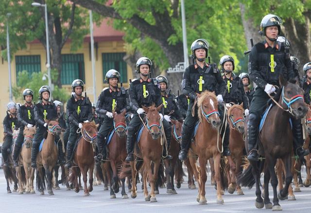 Có thể sử dụng thêm giống ngựa Bắc Hà để xây dựng Đoàn Cảnh sát cơ động kỵ binh - Ảnh 2.