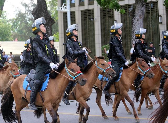 Có thể sử dụng thêm giống ngựa Bắc Hà để xây dựng Đoàn Cảnh sát cơ động kỵ binh - Ảnh 3.