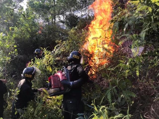 Xúc động hình ảnh hàng trăm chiến sỹ mồ hôi mặn chát, rã rời giữa biển lửa cứu rừng - Ảnh 1.