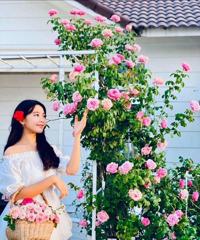 Sân vườn trong biệt thự bạc tỷ của 3 nam diễn viên nổi tiếng nhất nhì showbiz Việt, ai nhìn cũng phải ngưỡng mộ - Ảnh 26.