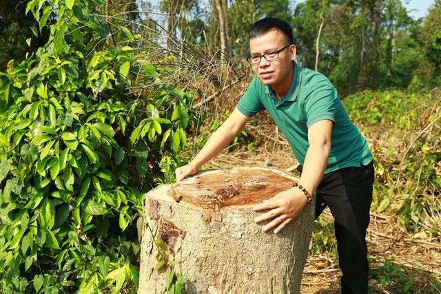 Nguyên giám đốc khu bảo tồn phá rừng ở Đồng Nai bị kỷ luật - Ảnh 1.