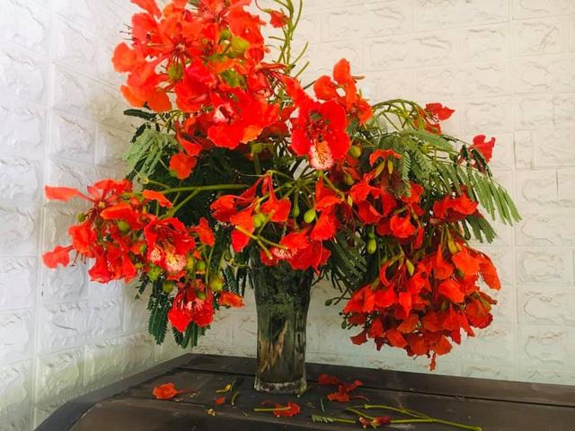 Không chỉ làm gỏi, loài hoa nở đỏ rực vào mùa hè còn có thể làm ra loại trà dưỡng nhan cực thơm ngon và bổ dưỡng này - Ảnh 2.