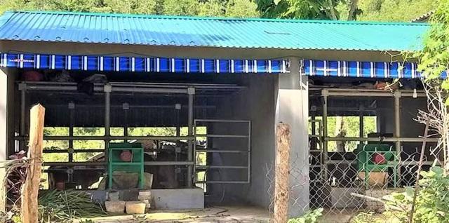 Nghệ An: 67 chuồng bò với giá hơn 12 tỷ đồng khiến dư luận băn khoăn - Ảnh 5.