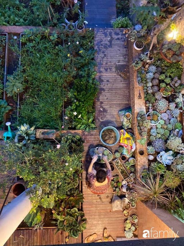 Mảnh vườn 50m² tốt tươi quanh năm nhờ bí quyết trộn đất không giống ai của bà mẹ ở Sài Gòn - Ảnh 11.