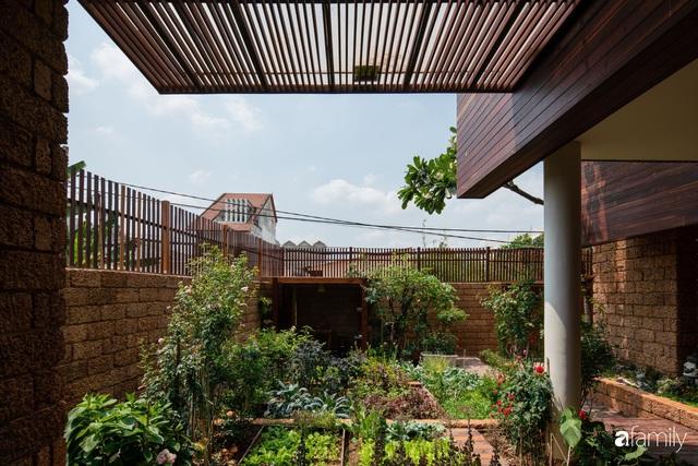 Mảnh vườn 50m² tốt tươi quanh năm nhờ bí quyết trộn đất không giống ai của bà mẹ ở Sài Gòn - Ảnh 6.