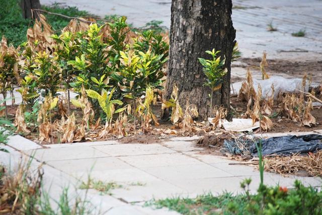 Hà Nội: Đại lộ nghìn vừa tỷ thông xe đã ngập trong rác, nước miễn phí đặt ven đường không ai uống - Ảnh 7.
