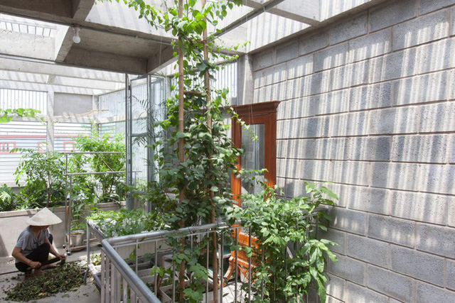 Ngôi nhà gạch khối và bê tông thoáng mát trong tiết trời nóng bức - Ảnh 9.