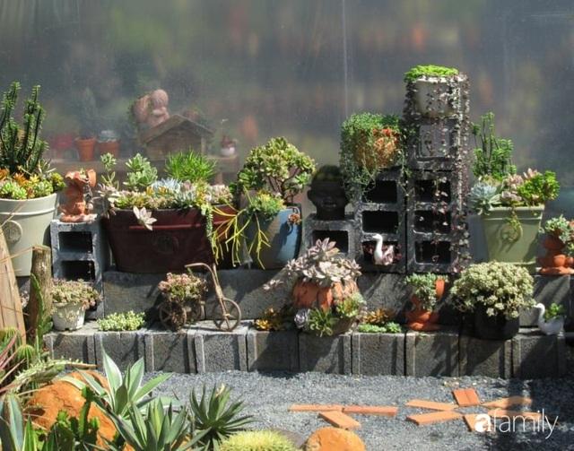 Chỉ tốn hơn 1 triệu đồng, mẹ trẻ biến hình mảnh đất nhỏ trở thành khu vườn trồng xương rồng, sen đá đẹp mê mẩn ở Đà Lạt - Ảnh 2.