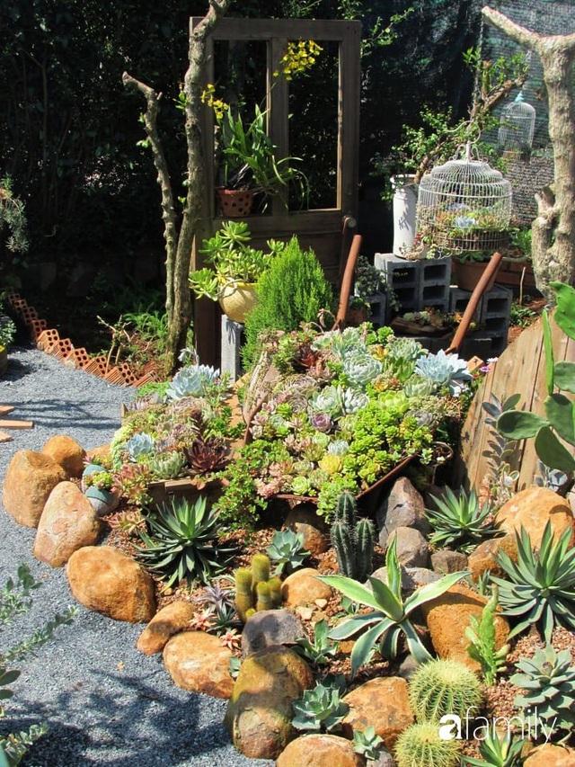 Chỉ tốn hơn 1 triệu đồng, mẹ trẻ biến hình mảnh đất nhỏ trở thành khu vườn trồng xương rồng, sen đá đẹp mê mẩn ở Đà Lạt - Ảnh 16.