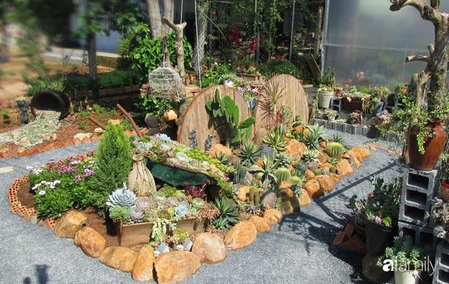 Chỉ tốn hơn 1 triệu đồng, mẹ trẻ biến hình mảnh đất nhỏ trở thành khu vườn trồng xương rồng, sen đá đẹp mê mẩn ở Đà Lạt - Ảnh 3.