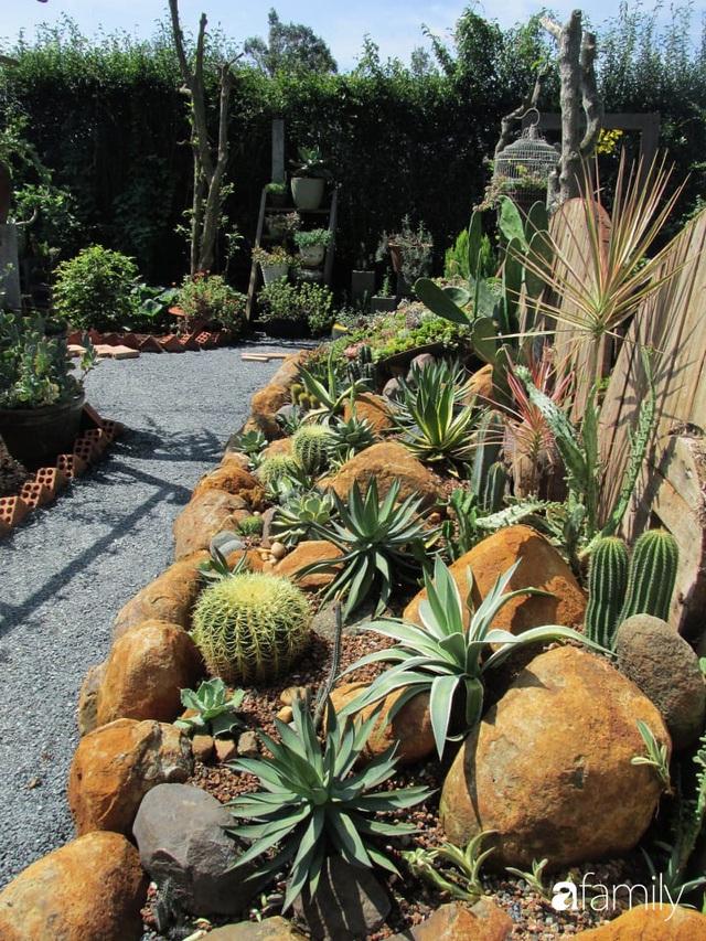 Chỉ tốn hơn 1 triệu đồng, mẹ trẻ biến hình mảnh đất nhỏ trở thành khu vườn trồng xương rồng, sen đá đẹp mê mẩn ở Đà Lạt - Ảnh 24.
