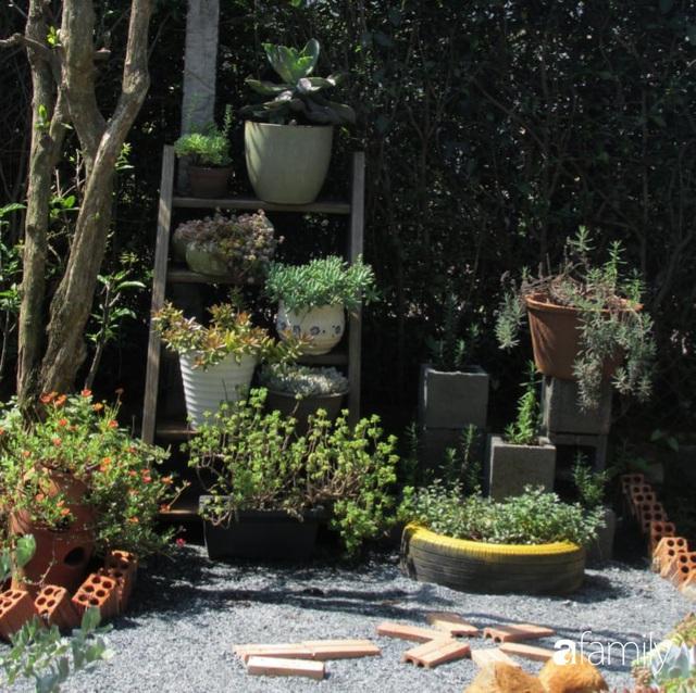 Chỉ tốn hơn 1 triệu đồng, mẹ trẻ biến hình mảnh đất nhỏ trở thành khu vườn trồng xương rồng, sen đá đẹp mê mẩn ở Đà Lạt - Ảnh 25.