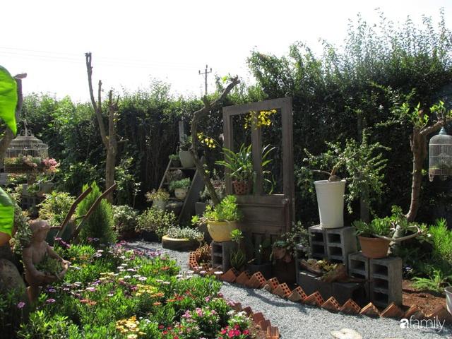 Chỉ tốn hơn 1 triệu đồng, mẹ trẻ biến hình mảnh đất nhỏ trở thành khu vườn trồng xương rồng, sen đá đẹp mê mẩn ở Đà Lạt - Ảnh 26.