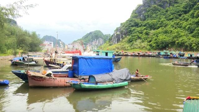Bão số 2: Hải Phòng, Quảng Ninh sơ tán dân, cấm biển từ 0h ngày 2/8 - Ảnh 4.