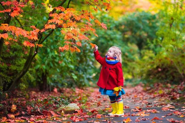 8 thứ trẻ cần phải có trong tuổi thơ - Ảnh 2.
