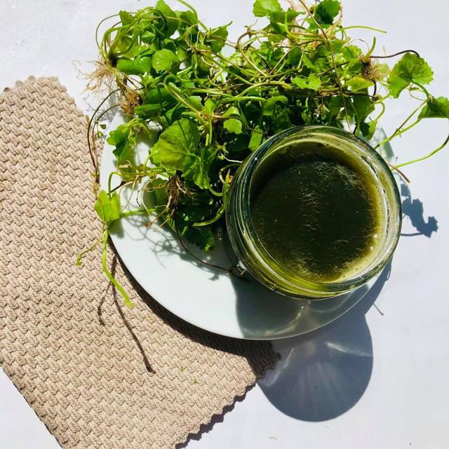 Ngạc nhiên loại rau dại mọc đầy ven đường lại chế biến được thành loạt món ăn gây thương nhớ, ăn tươi hay nấu chín đều ngon - Ảnh 3.