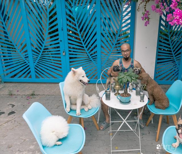 Khu vườn trước nhà xanh mát bóng cây và hoa của anh chàng Sài Gòn dành cả thanh xuân để chăm sóc thú cưng - Ảnh 1.