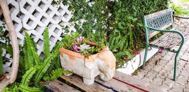 Khu vườn trước nhà xanh mát bóng cây và hoa của anh chàng Sài Gòn dành cả thanh xuân để chăm sóc thú cưng - Ảnh 18.