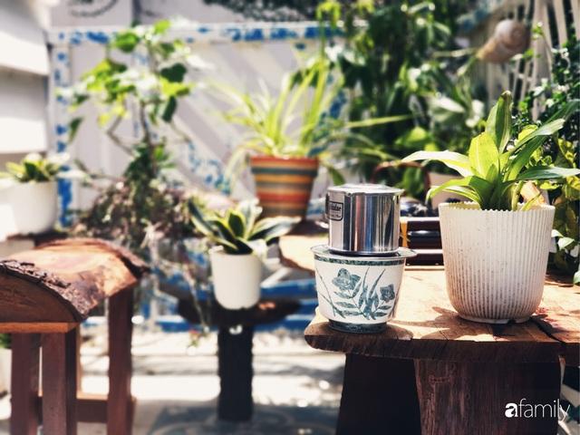 Khu vườn trước nhà xanh mát bóng cây và hoa của anh chàng Sài Gòn dành cả thanh xuân để chăm sóc thú cưng - Ảnh 7.