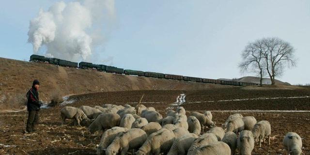 Một người chết vì dịch hạch, Trung Quốc phong tỏa cả làng ở Nội Mông - Ảnh 1.