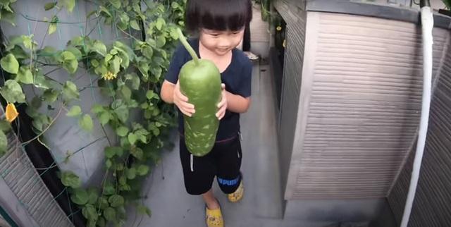 Vườn rau mùa thu của hot vlogger Quỳnh Trần JP - Ảnh 5.