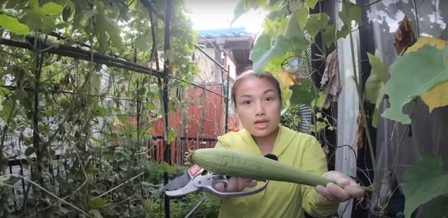 Vườn rau mùa thu của hot vlogger Quỳnh Trần JP - Ảnh 8.