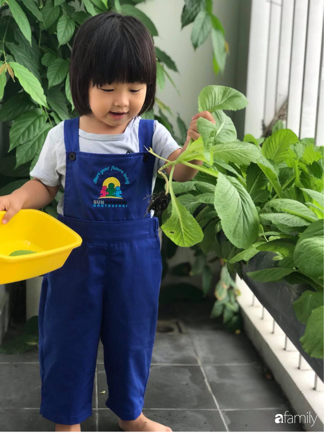 Ban công nhỏ ở chung cư phủ kín đủ loại rau quả sạch nhờ trồng bằng ống nhựa của mẹ đảm ở Sài Gòn - Ảnh 2.
