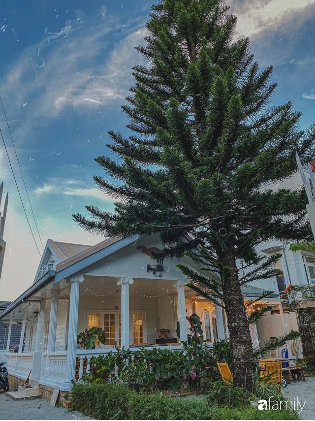 Ngôi nhà màu xanh an yên đẹp như cổ tích của vợ chồng trẻ bỏ việc lương cao ở Sài Gòn về Đà Lạt sinh sống - Ảnh 3.