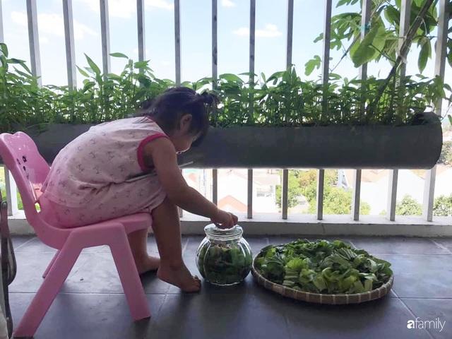 Ban công nhỏ ở chung cư phủ kín đủ loại rau quả sạch nhờ trồng bằng ống nhựa của mẹ đảm ở Sài Gòn - Ảnh 9.