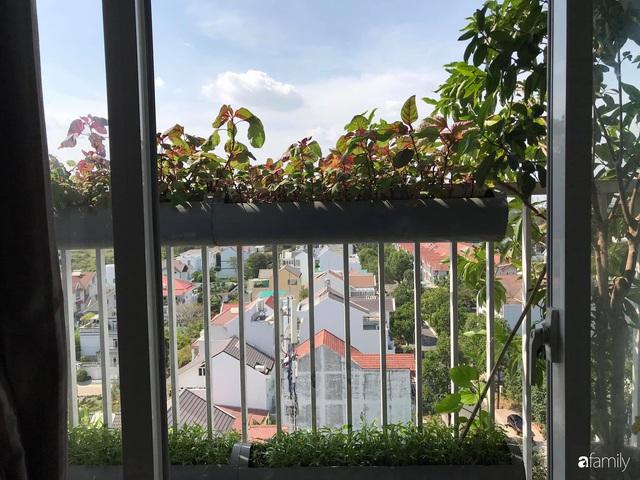 Ban công nhỏ ở chung cư phủ kín đủ loại rau quả sạch nhờ trồng bằng ống nhựa của mẹ đảm ở Sài Gòn - Ảnh 10.