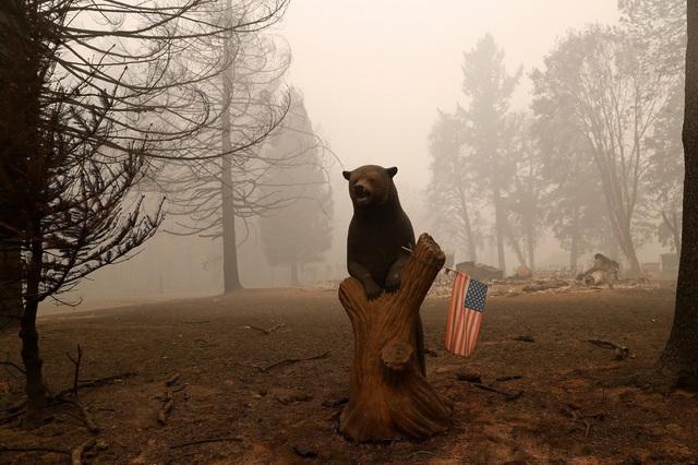 Khung cảnh như tận thế vì cháy rừng ở Bờ Tây nước Mỹ - Ảnh 10.