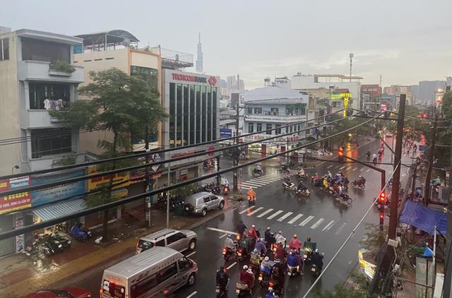 TP.HCM: Cây xanh bất ngờ bật gốc đổ ngang đường trong mưa to gió lớn, đè trúng 1 người đi xe máy - Ảnh 5.