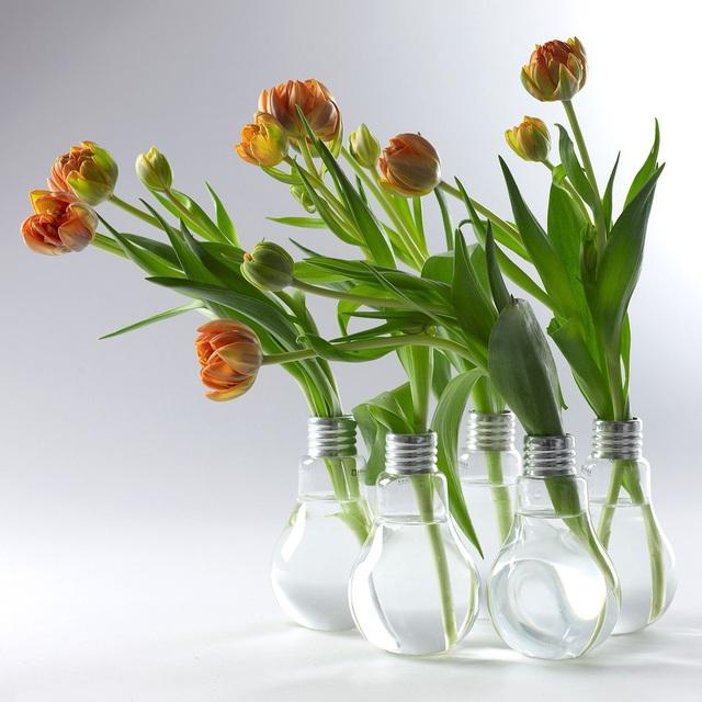 Những mẫu bình hoa độc đáo giúp làm đẹp ngôi nhà - Ảnh 11.