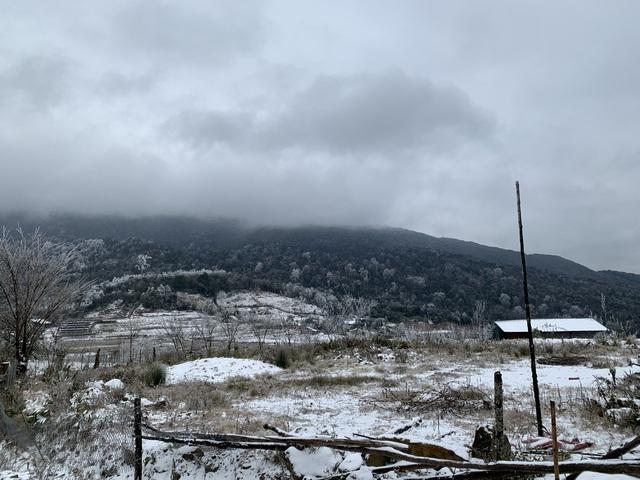 ẢNH: Tuyết phủ trắng, Lào Cai đẹp như trời Âu, người nông dân lại khóc ròng chịu cảnh rau màu bị thiệt hại nặng - Ảnh 4.