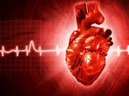 Giáo sư tim mạch nổi tiếng: Khi có dấu hiệu này, hãy coi chừng bạn đã mắc bệnh mỡ máu cao!