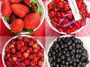 Những thực phẩm đã quá hạn s� dụng nếu tiếc sẽ gây bệnh nguy hiểm cho sức khỏe