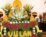 Những loại hoa nào không dâng cúng trên bàn thờ?