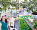 Từng không biết gì về trồng trọt, mẹ Việt giờ đã sở hữu vườn rau sạch đẹp như 'công viên mini'