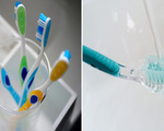 Rước cả ổ vi khuẩn vào người vì thói quen dùng bàn chải đánh răng sai lầm