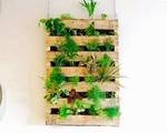 Nhà chật chội đến mấy vẫn thoải mái trồng rau sạch nhờ biết làm vườn treo