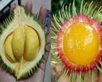 Hoa quả lạ, đắt đỏ liên tục cập bến thị trường Việt Nam, dân vừa ăn vừa lo