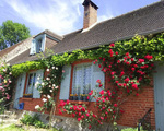 Ngắm những ngôi nhà thơ mộng với giàn hoa đẹp như cổ tích ở làng quê