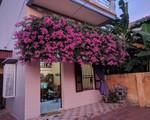 Thanh niên khoe căn nhà xinh có giàn hoa giấy 20 năm tuổi đẹp nức lòng cư dân mạng