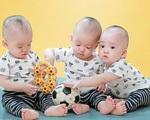 Điều chưa biết về 3 bé trai sinh cùng trứng vô cùng hiếm gặp